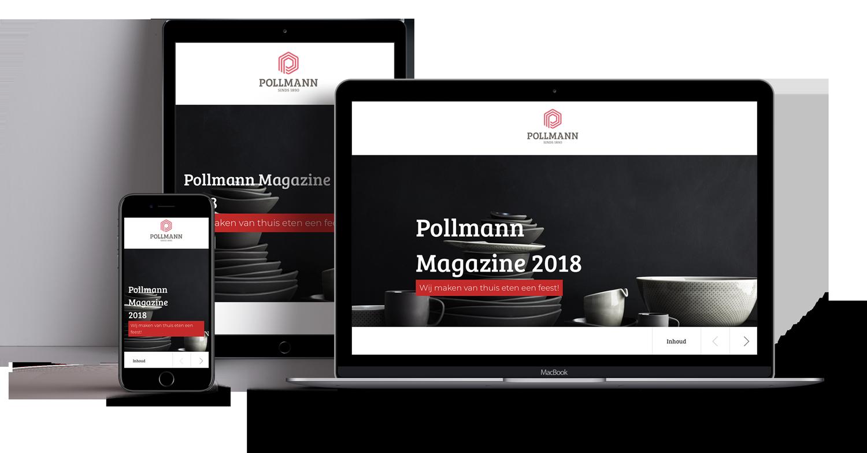 Voorbeeld-eziner-pollmann